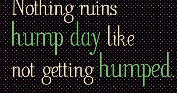 Nothing ruins hump day like not getting humped. ~k/cq~ | Tats | Pinterest | Coupon codes, So true and Its hump day | Obnoxious | Pinterest