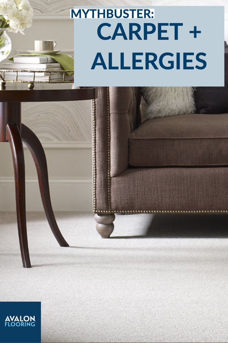 Myths About Carpet Allergies How To Keep A Clean Carpet How To Clean Carpet Carpet Home Decor