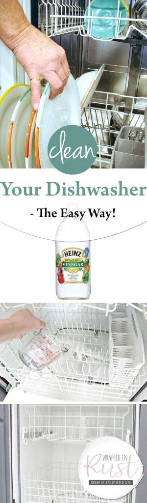 Clean Your Dishwasher -- The Easy Way!