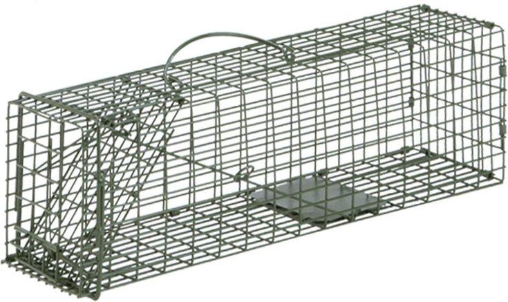 Duke 1 single door cage trap trapsworkout duke 1 single