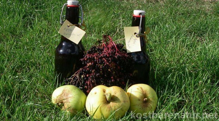Saft aus Holunder ist gesund, lecker und die Früchte sind kostenlos an vielen Wegen zu ernten. Mische Äpfel alter Sorten dazu und es wird richtig lecker!