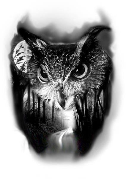 best 25 owl tattoo design ideas on pinterest owl neck. Black Bedroom Furniture Sets. Home Design Ideas
