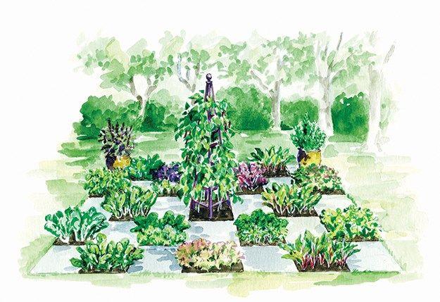 Marjorie harris partially shaded checkerboard edible for Checkerboard garden designs