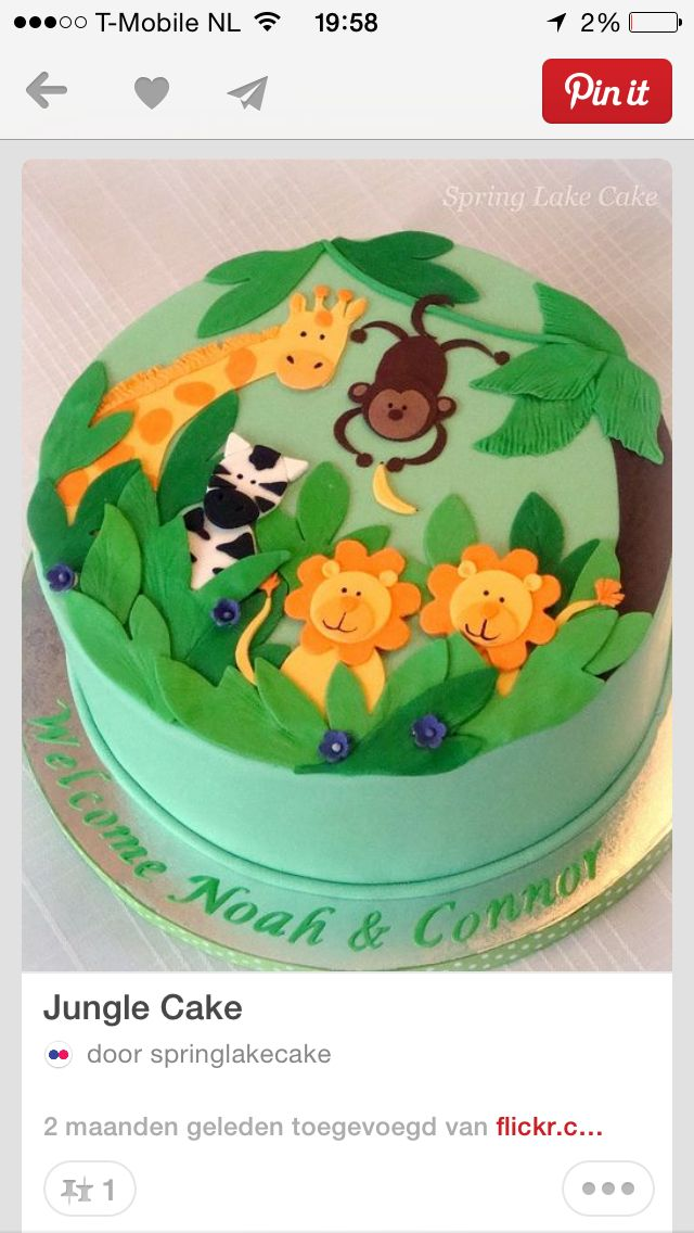 Jungle cake / taart