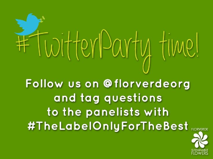 Wanna get insights about sustainable floriculture? Join us on @florverdeorg and tweet your questions using #TheLabelOnlyForTheBest to get them answered by an expert