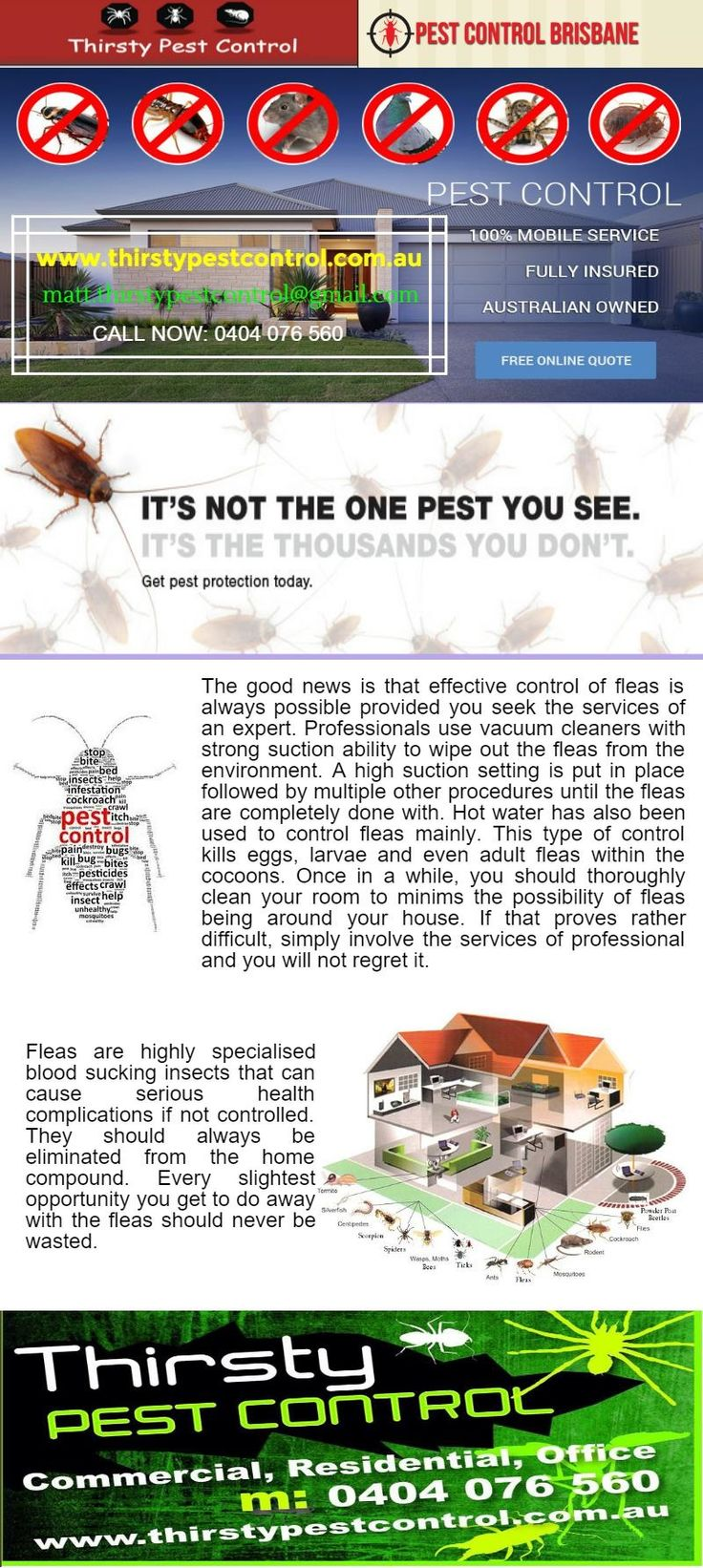 #Brisbane_pest_controllers    Fleas are highly specialised blood sucking insects that can cause serious health complications if not controlled. They should always be eliminated from the home compound.  thirstypestcontrol.wordpress.com/2016/03/05/fleas-pest-control-brisbane/
