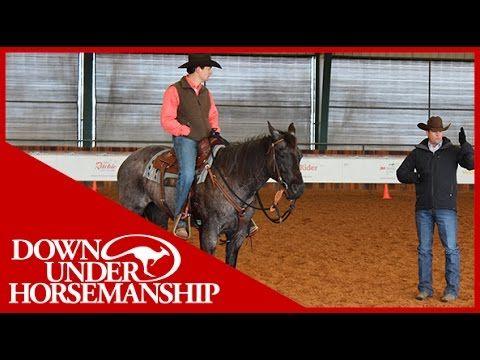 Sidepassing, Shoulder In/Shoulder Out, & the Cloverleaf Exercise~Clinton Anderson: Intermediate Testing, Riding Part 2 - Downunder Horsem...