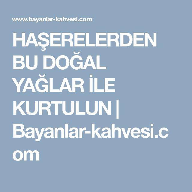 HAŞERELERDEN BU DOĞAL YAĞLAR İLE KURTULUN | Bayanlar-kahvesi.com