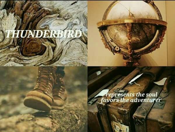 Thunderbird, ilvermorny house