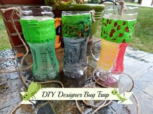 DIY Designer Bug Trap using a 2 liter or water bottle and different bate for different insects.