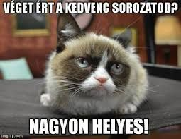 """Képtalálat a következőre: """"grumpy cat magyarul felirattal"""""""