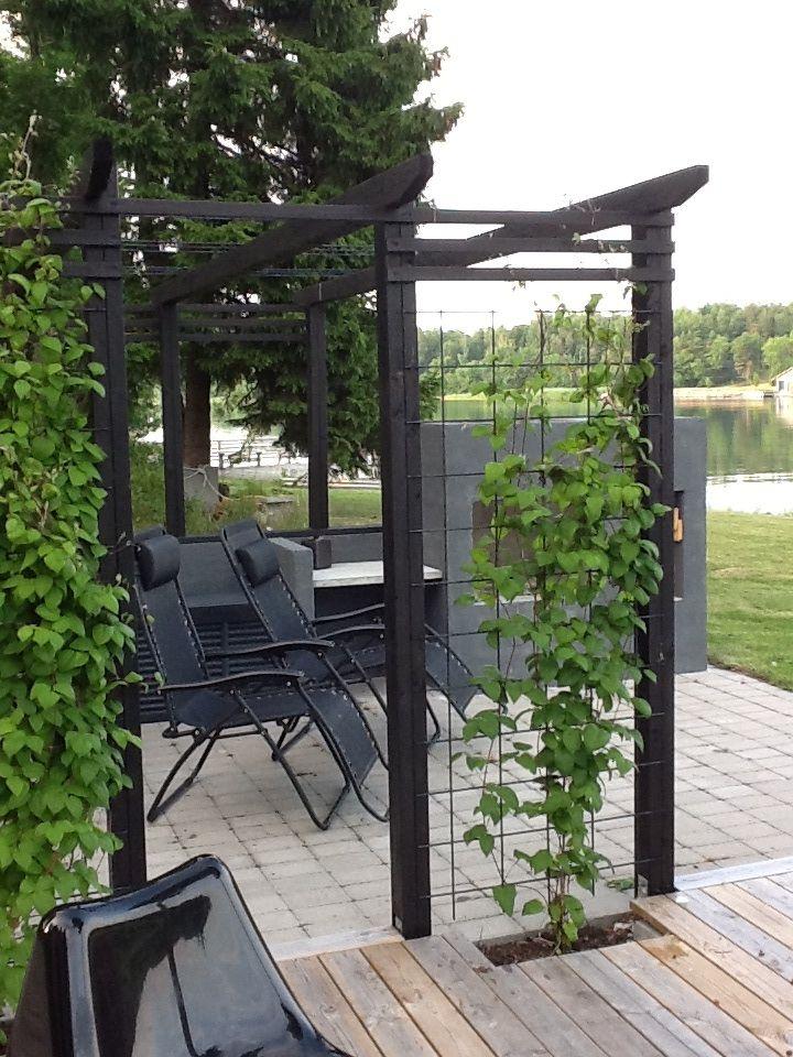 trädgård uteplats - Sök på Google - black wooden rectangular pergola with trellis for training climbing plants up.
