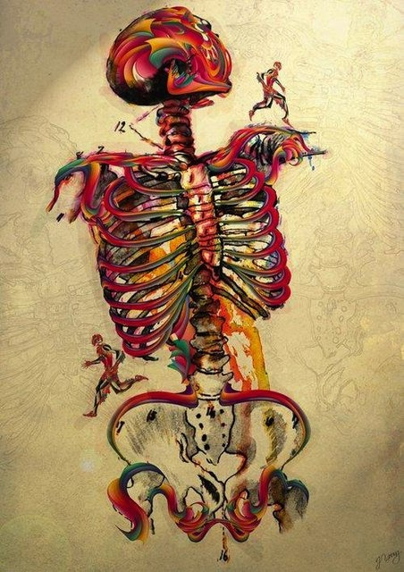 Skeleton Art
