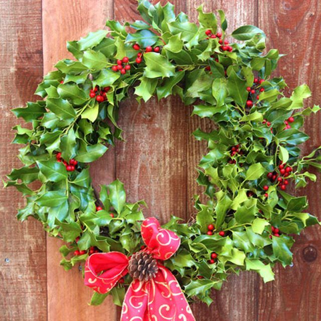 Make a holly wreath for inside or outside.