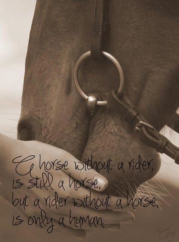 a horse without a rider is still a horse but a rider without a horse is only human