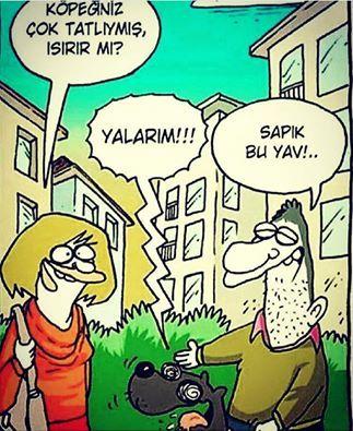 - Köpeğiniz çok tatlıymış, ısırır mı? + Yalarım!!! - Sapık bu yav!.. #karikatür #mizah #matrak #komik #espri #şaka #gırgır #komiksözler
