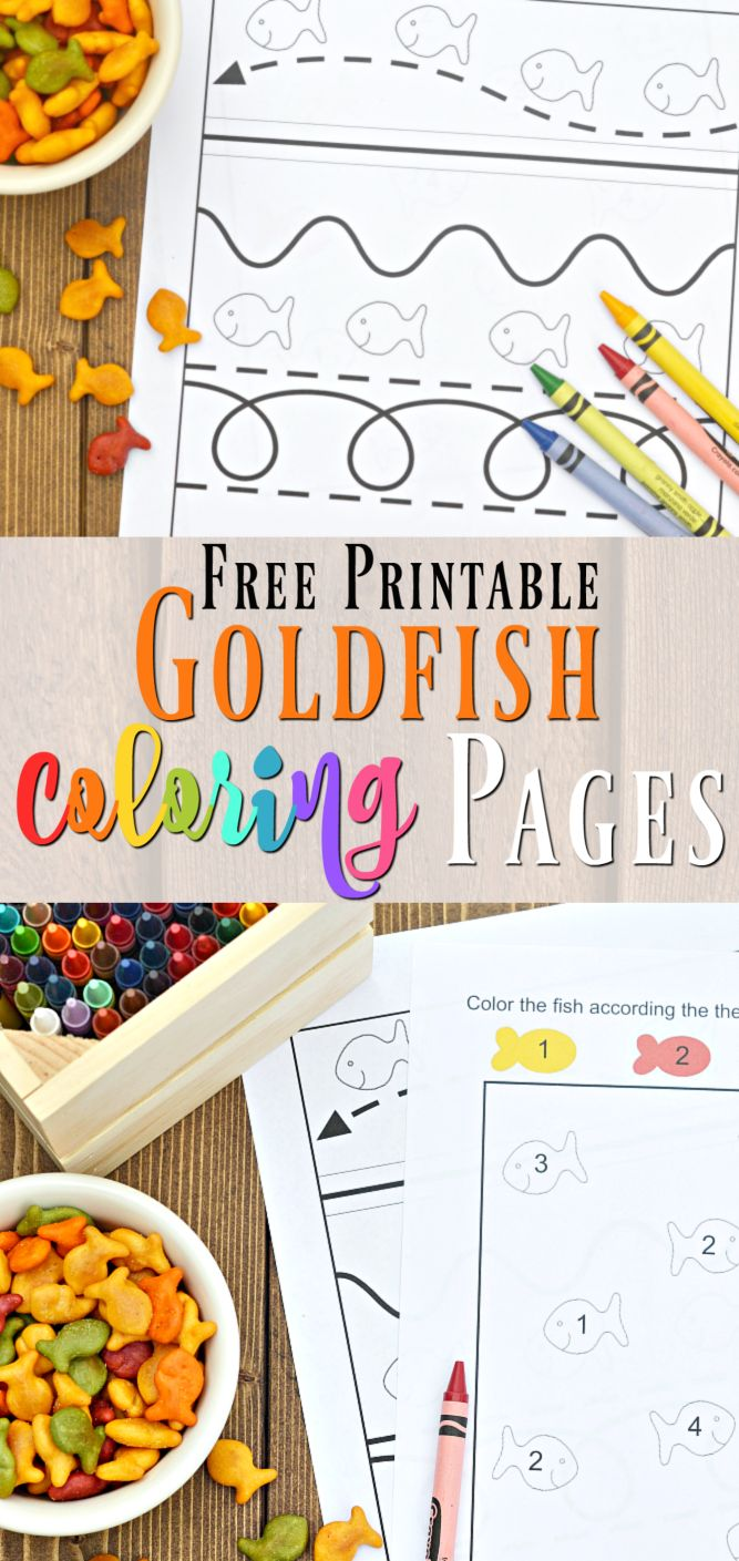 The zoology coloring book - Break Out The Crayons And Markers And Enjoy These Free Printable Coloring Pages