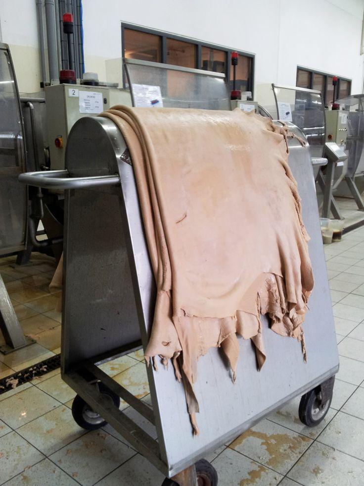 Leather in development departement