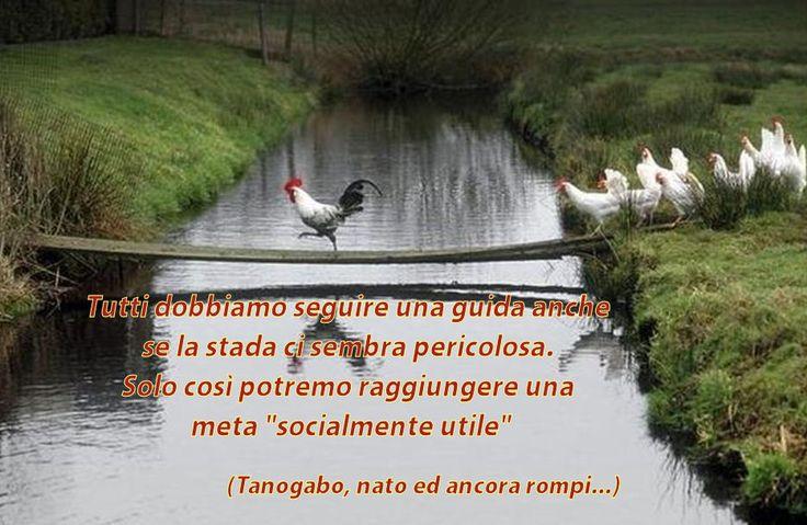 Tanogabo 03