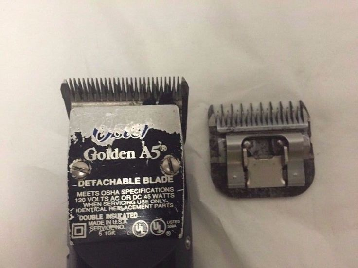 Oster A5 Animal Clippers Electric Vintage Dogs Detachable Blades 15 and 7 #Oster