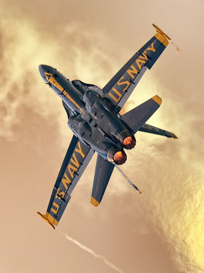 Blue Angel - be still my heart!!! Best part of August!! Sure do miss seeing them here :-(