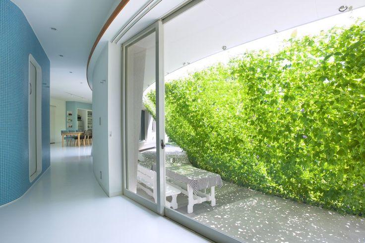 Grüne Wand zeitgenössisches Design Fluid Bio & nachhaltige Vermögenswerte Featured In ein japanisches Home von Hideo Kumaki Büro Architekten