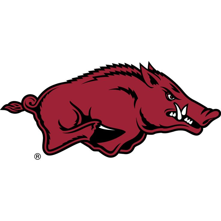 FRONT OF WIDGET - 2017 Arkansas Razorbacks Football Schedule Dashboard Widget for Mac OS X - Wooo Pig Sooie! - National Champions 1964 Download yours at: http://2thumbzmac.com/teamPagesWidgets/Arkansas_Razorbacks.htm