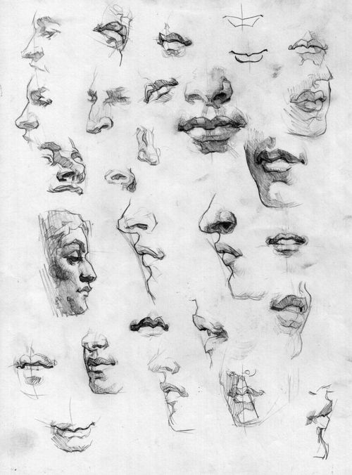 profiles, lips, chins and noses. really useful reference, especially like the angled shading and the applied lines.
