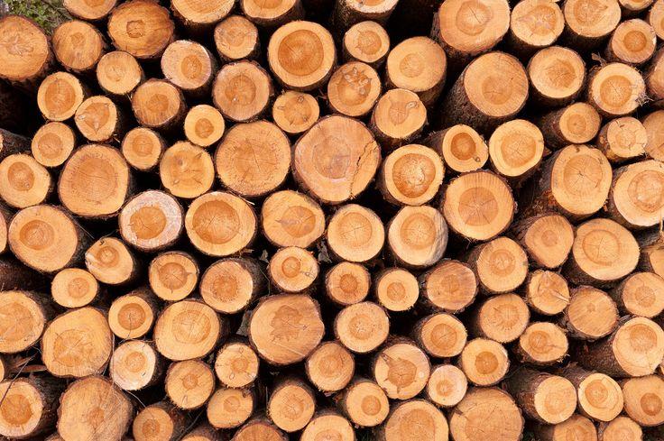 Par. 2 Voor verbranding heb je een brandstof nodig bijvoorbeeld: hout. Maar ook benzine, steenkool en waterstofgas kunnen als brandstof gebruikt worden.