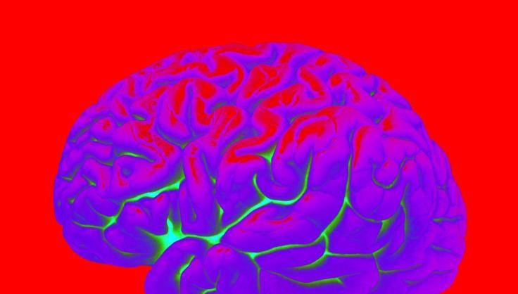 [ΕΡΤ]: Έρευνα: Ο ανθρώπινος εγκέφαλος λειτουργεί σε περισσότερες από 4 διαστάσεις | http://www.multi-news.gr/ert-erevna-anthropinos-egefalos-litourgi-perissoteres-apo-4-diastasis/?utm_source=PN&utm_medium=multi-news.gr&utm_campaign=Socializr-multi-news