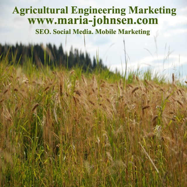 Effective and innovative digital marketing for businesses in Saskatchewan