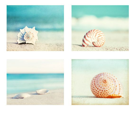 "Beach Photography Set  Four Photographs by CarolynCochrane on Etsy Individual prints from this set can be purchased from the links below...  ""Paradise"" (top left) - http://www.etsy.com/listing/94878982 ""Nautilus"" (top right) - http://www.etsy.com/listing/98538429 ""Serenity"" (bottom left) - http://www.etsy.com/listing/76320845/ ""Seashell Voices"" (bottom right) - http://www.etsy.com/listing/94887311"