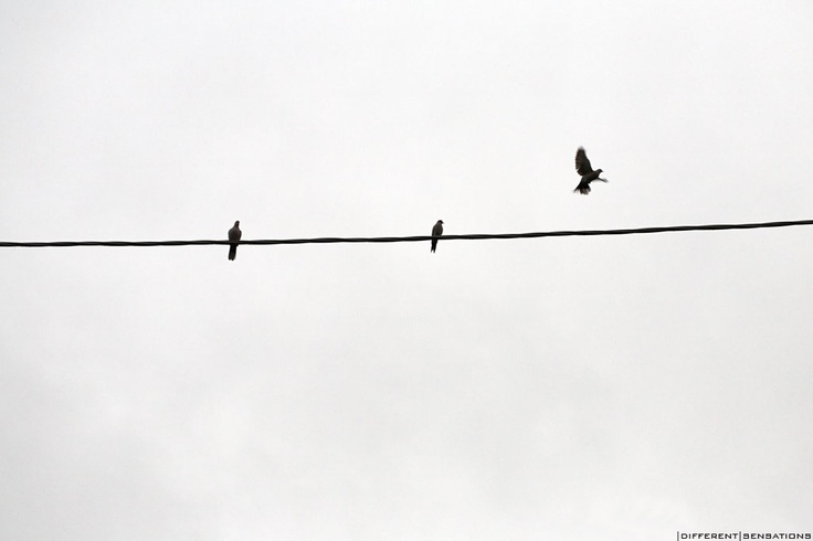 ORA DEVO ANDARE |DIFFERENT |SENSATIONS photoblog foto Walter Donega'