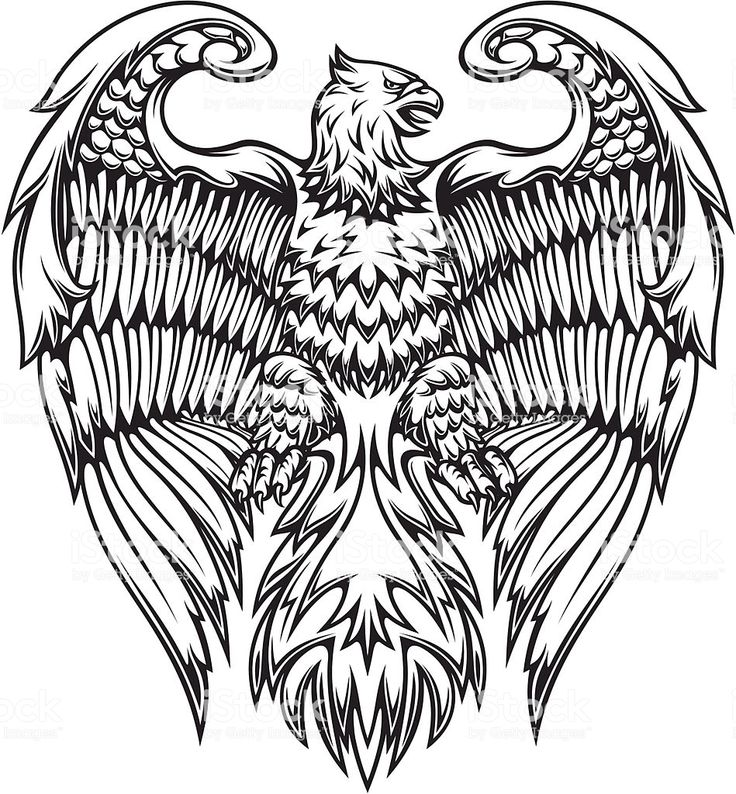 Powerful Eagle Or Griffin In Heraldic Style Em 2020 Com Imagens