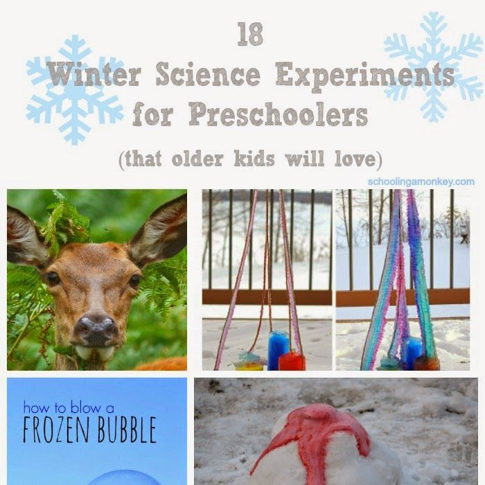 18 Winter Science Experiments for Preschoolers (Plus a MASSIVE $500 Christmas giveaway!) ~ Schooling a Monkey