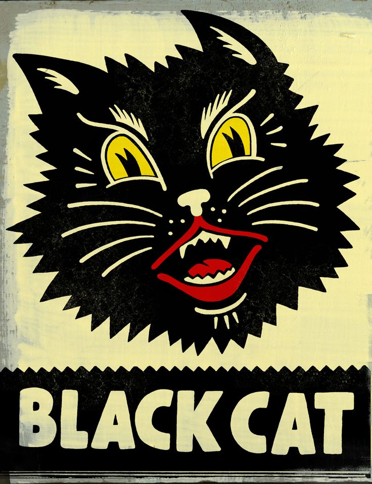 Vintage Halloween black cat Illustration -cookie decorating inspiration.
