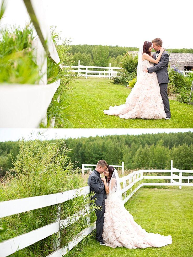 sylvan lake weddings | pink wedding dress | intimate back yard wedding | romantic wedding photos | calgary wedding photographer | calgary photographers