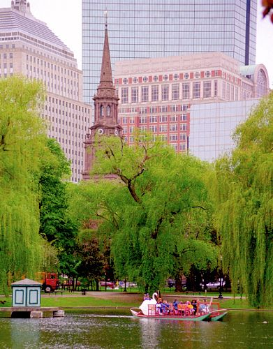 Boston Public Garden Botanic Historic Public Gardens