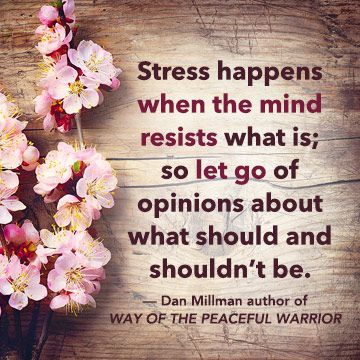 """""""Stress happens when the mind resists what is; so let go of opinions about what should and shouldn't be."""" — Dan Millman, author of WAY OF THE PEACEFUL WARRIOR"""