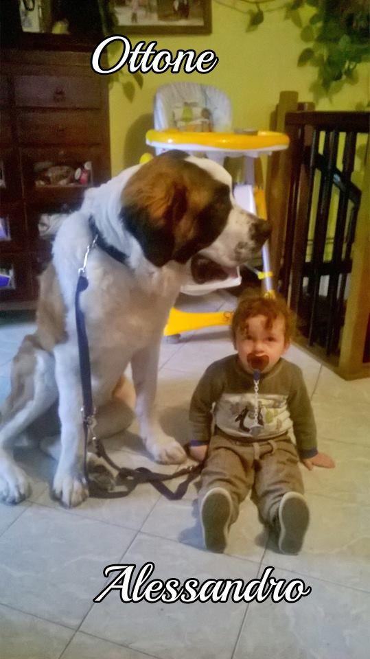 Ecco il gigante e il bambino parafrasando una celebre canzone di Lucio Dalla #MyDogAndMe