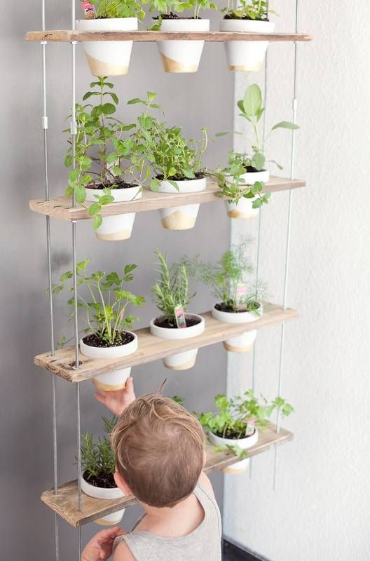 Custom Potted Hanging Herb Garden