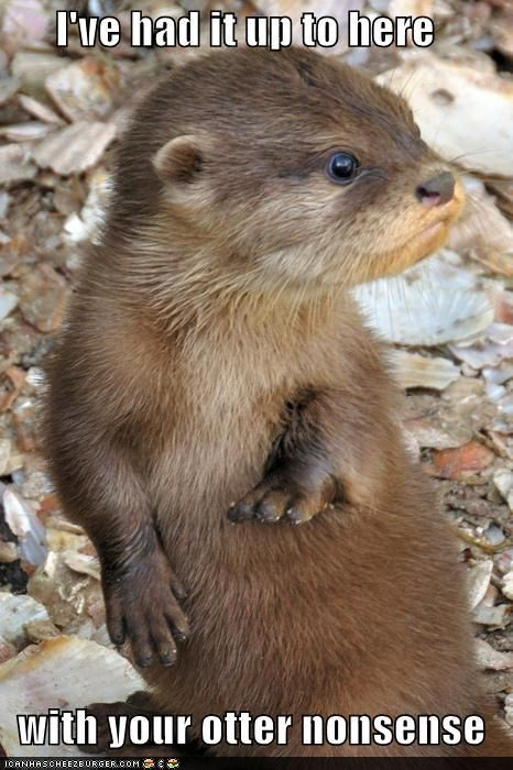 otter!!! Laughing way too much!!