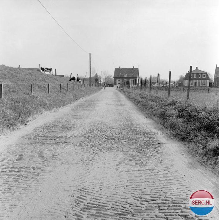 Malburgseveerweg Arnhem (jaartal: 1970) - Foto's SERC
