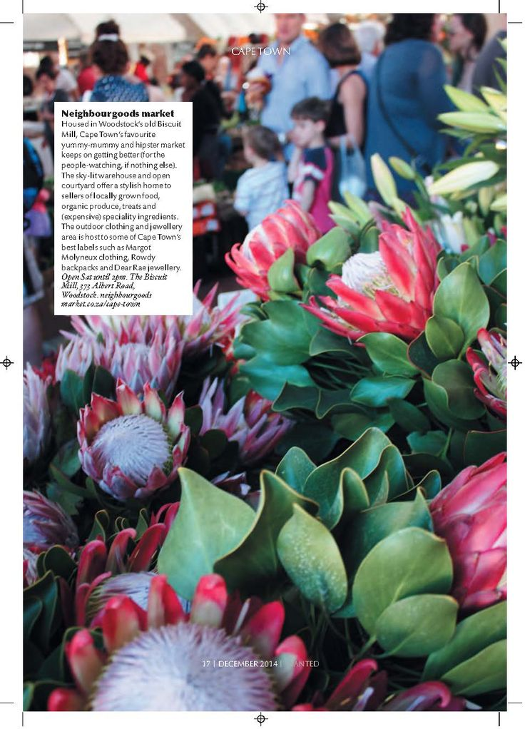 Cape Town's Markets | Business Day Wanted, Navigator - Sarah Evelyn