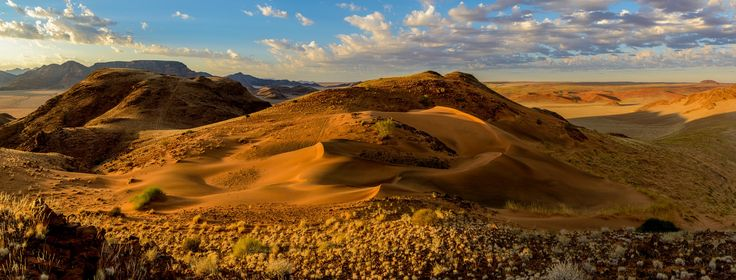 """Sossusvlei Dunes - Desert scenery and dunes (dune). Sossusvlei. Namib-Naukluft National Park. Namibia  We photographed this while working on our new book. <a href=""""http://goo.gl/Sx3tVz"""">Read about out it here</a> and <a href=""""http://goo.gl/l7bJ0G"""">Visit our portfolio site here</a>"""