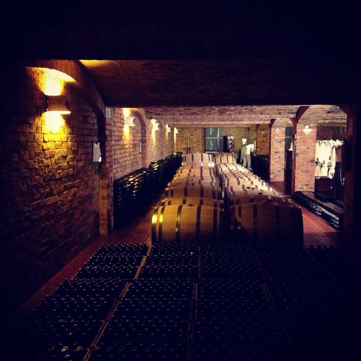Marqués de Villa de Leyva - Winery #vino #wine #Colombia