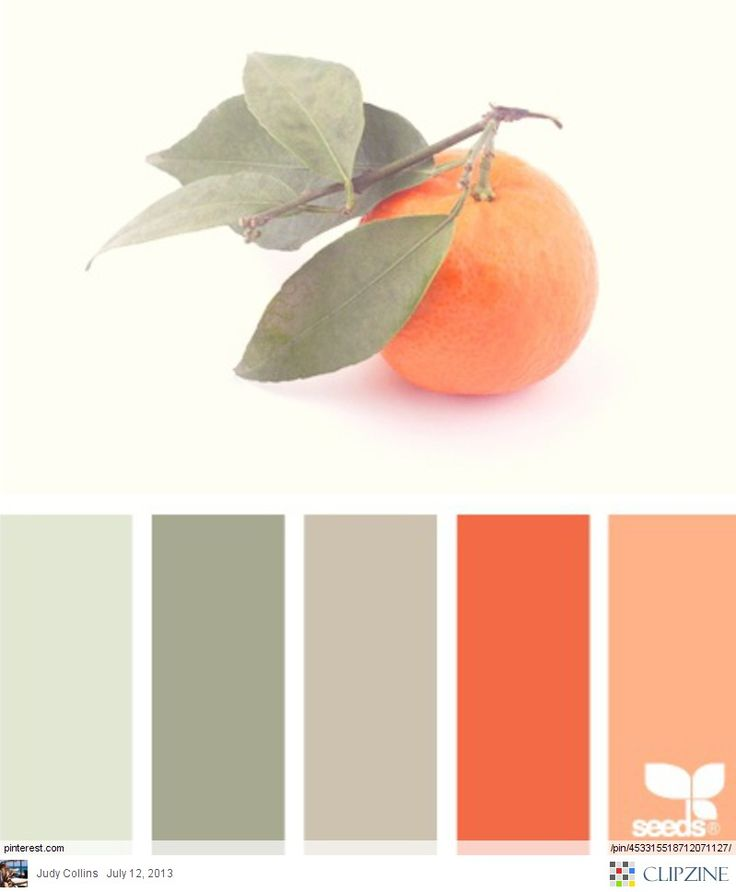 Wall Colour Inspiration: 25+ Best Ideas About Modern Color Palette On Pinterest