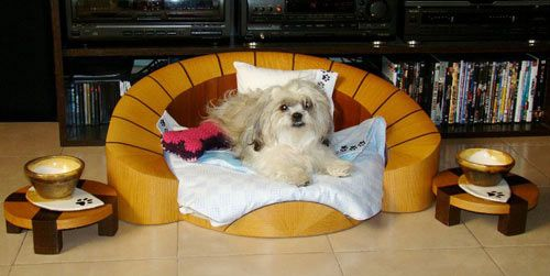 Contemporary Dog Furniture from Cedel Pets