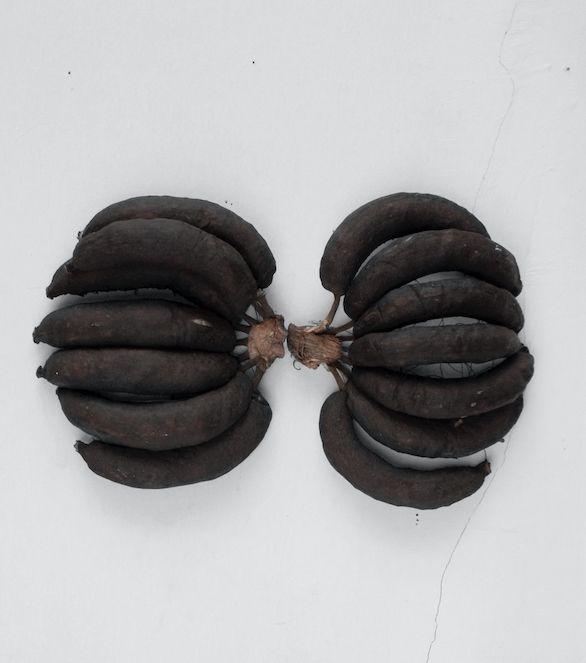 Andrés Bedoya, Tórax humano en una vista anterior, 2012, cáscara de banana, bolsas de plástico, hilo, 46 cm x 30 cm. Cortesía: Nube Galería, Bolivia