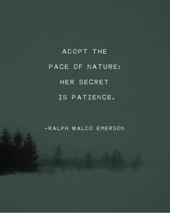 Ralph Waldo Emerson Adopt The Pace Of Nature Poem Men S Etsy Nature Poem Emerson Quotes Emerson